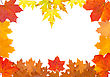 Ornament From Autumn Leaves Of Different Colour, From Different Trees stock photography