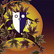 Owl And Tree Background