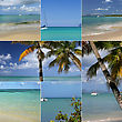 Palm Trees, Exotic Island, Pleasure Boats stock photo