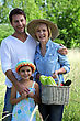Parents And Young Daughter With Basket Of Vegetables stock photography