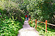 Path To The Baths Of Aphrodite In Akamas, Cyprus.