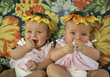 babies incubator infant people group stock photo
