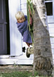 playing child climbing outdoor active boy stock image