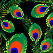 Peacock Feathers Background, Abstract Art Illustration