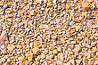 Rounded Pebble Background At Sun Light. Stone Texture stock photography