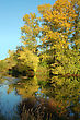 Picturesque Autumn Landscape Of River And Bright Trees And Bushes