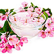 Rejuvenation Pink Apple Flowers In A Glass Bowl With Water stock image