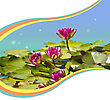 Pink Waterlilies In Pond .Flowers Background For Text