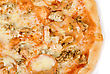 Pizza Pizza Closeup With Chicken Fillet, Tomato And Mozzarella Cheese stock photography