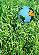 Planet Earth With All Countries Of The World On A Meadow Of Green Grass stock photography