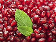 Pomegranates Seeds As Background stock photography