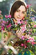 Portrait Of Pretty Young Woman Posing In Flowering Trees