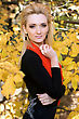 Portrait Of A Young Blonde Amongst The Autumn Leaves stock photography