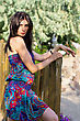 Pretty Young Brunette In Dress Near The Wooden Fence