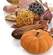 Pumpkin And Fall Items On White Background stock photography