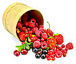 Red And Black Currants, Raspberries, Strawberries, Cherries With Green Leaves In A Bowl From Birch Bark stock photo