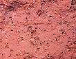 Red Concrete Macro Pattern stock image