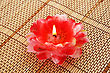 Red Flower Candle Isolated On Bamboo Background.