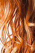 Red Hair Macro Or Very Closeup View stock photo