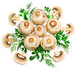 Ripe Mushroom Champignon With Green Parsley Leaves Isolated On White Background stock image