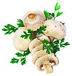 Ripe Mushroom Champignon With Green Parsley Leaves Isolated On White Background stock photography