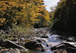 Riverbed with Rocks in the Fall stock photo