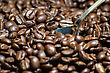 Roasted Coffee Beans With Spoon. Close-up