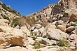 Rocks, Streams And Waterfalls, Water And Life In The Arid Desert - Ein Gedi Nature Reserve Off The Coast Of The Dead Sea stock photography