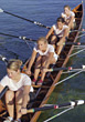 Rowing Team stock photography