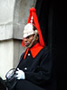 Queen Royal English Guard, Buckingham Palace stock photo