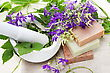 Rural Flowers And Herbs In Mortar Spa Composition stock photo