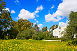 Rural Landscape With House,trees And Flowers,cloudy Sky stock photography
