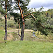 Rural Landscape Of Lithuania. Pine Tree. Small River Valley. stock photo