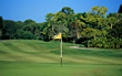 golfing grass resort stock image