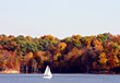 Sailboat on the Lake stock photography