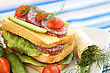 Sandwiches With Salami, Cheese, Cherry Tomato And Herbs On Plate stock image