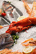 Cool Seafood stock photography