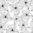 Seamless Pattern With Black Hand Drawn Orchids On White Background. Vector Illustration For Design Of Gift Packs, Wrap, Patterns Fabric, Wallpaper, Web Sites And Other