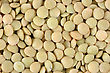 Seeds Of Lentils Close Up stock photography