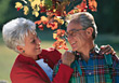 Senior Couple in the Park stock image