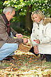 October Senior Man And Senior Woman Collecting Chestnuts stock photography