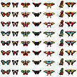 Set Of Butterflies In Different Colors. EPS 10 Vector Illustration