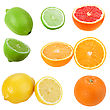Set Of Citrus Fruits Close-up Studio Photography stock image