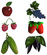 Set Of Color Fruit And Vegetables. EPS 10 Vector Illustration With Transparency
