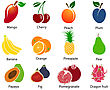 Set Of Cute Fruit Icons With Title Over White Background. Vector Illustration
