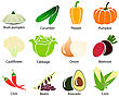 Set Of Cute Vegetable Icons With Title Over White Background. Vector Illustration