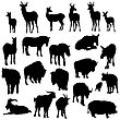Set Of Deer, Horses, Goats, Yaks, Buffalos And Pig Silhouettes. Vector Illustration. stock vector