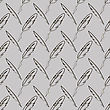 Set Of Different Feathers Isolated On Grey Background. Seamless Feather Pattern stock vector