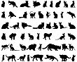 Set Of Different Vector Cats Silhouettes