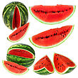 Set Fresh Watermelon Isolated stock image